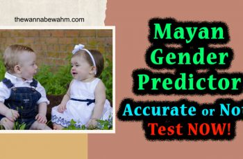 Mayan Gender Predictor